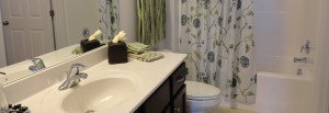 Image of Bathroom with hard surface countertops and shower